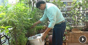 Composting begins at home