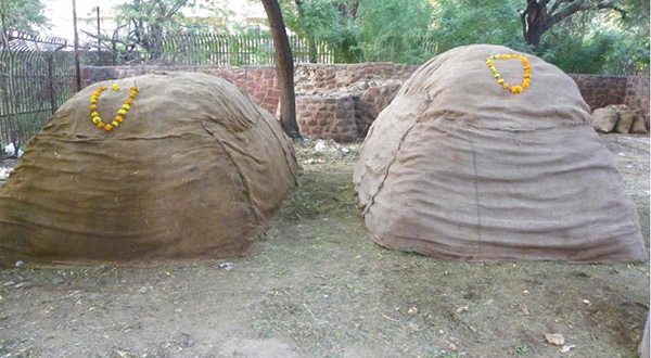 Two compost beds at Jodhpur Zoo